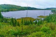Arthabaska jezioro w grands parki narodowi, Quebec zdjęcia royalty free