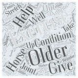Arthritis and the Older Horse word cloud concept  background Royalty Free Stock Photo