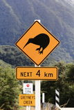 New Zealand Kiwi. In Arthur's Pass National park kiwi crossing the road is a major hazard stock images