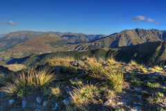 Arthur's Pass National Park Stock Image