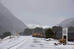 Arthurspas in sneeuw Stock Afbeeldingen