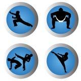 Arti marziali illustrazione di stock