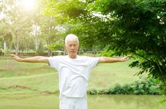 Arti marziali di pratica della gente senior nel parco Immagine Stock Libera da Diritti