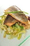 Artic char fish Stock Images