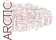 Artic Tours Word Cloud Concept Stock Image