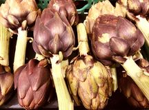 Artichauts crus et organiques photo stock