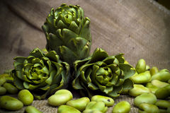Artichock and fava beans. Artichocks and fava beans on brown organic sheet Stock Photography