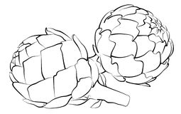 Artichoke. Black and white artichoke illustration. Easy to edit, artichokes are all individually grouped on separate layers Stock Photo