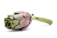 Artichoke. Isolated on white background Stock Photography
