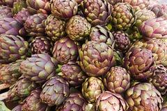 Artichoke. Italian artichoke - ingredient for mediterranean diet . cynara scolymus Royalty Free Stock Images