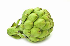 Artichoke. Side view of artichoke isolated on white background with room for copy Stock Photography