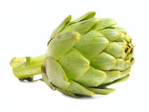 Artichoke. A single artichoke on a white background Stock Images