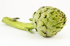 Free Artichoke Royalty Free Stock Photos - 24634698