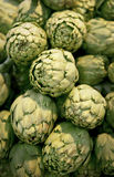 Artichoke. Green fresh pile of artichoke Royalty Free Stock Image