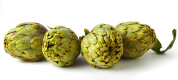 Free Artichoke Royalty Free Stock Photography - 29246587