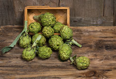 Artichoke Stock Photos