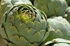Artichoke. Close-up macro of artichoke with copyspace. Shallow depth of focus Royalty Free Stock Photos