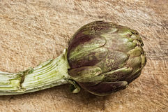 Artichoke royalty free stock photos