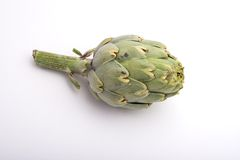 Artichoke. Isolated Artichoke royalty free stock photo