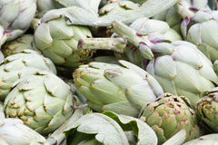 Artichoke background. Asparagus family, market stock photography Stock Photography