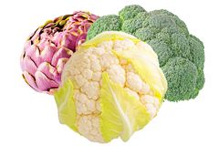 Artichoke, cauliflower and broccoli isolated on white. Isolated vegetables. fresh artichoke, cauliflower and broccoli isolated on white background for package Stock Photo