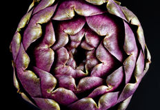 Artichoke Close Up Stock Photos