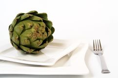 Artichoke dinner. Artichoke on square plate royalty free stock photos
