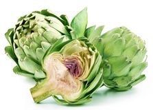 Artichoke flowers. Stock Photos