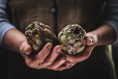 Artichoke in Hands Royalty Free Stock Photography