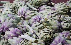 Artichoke Harvest. Just reaped crop of an artichoke Stock Images