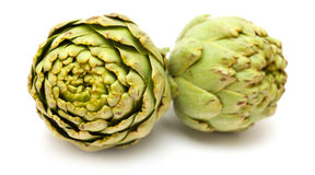 Artichoke isolated Stock Images