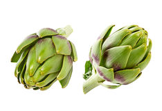 Artichoke isolated on white Stock Photos