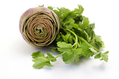 Artichoke and parsley Stock Photo