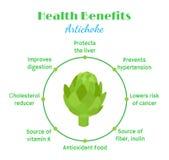 Artichoke`s health benefit, organic farm product. Green vegetable Stock Photography