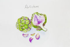 Artichoke watercolor painted Stock Photo