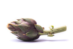 Artichoke on white background. Artichoke on white  still life background Royalty Free Stock Photo