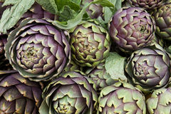 Artichokes Background Pattern Royalty Free Stock Images