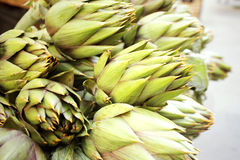 Artichokes Royalty Free Stock Photo