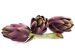 Artichokes. Closeup of three artichokes on a white background with small shadow Royalty Free Stock Images