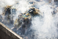 Artichokes baking on hot coals Stock Photo