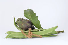 Artichokes and beans Royalty Free Stock Photography