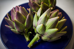 Artichokes in a blue plate. Three raw artichokes in a blue plate Royalty Free Stock Photo