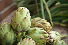 Artichokes crude royalty free stock photos