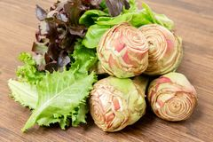 Artichokes garnished with salad. Ready to be eaten, both cooked and raw Stock Image