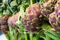 Artichokes macro. Vegetables. Full image closeup. Some artichokes. Vegetable. Full image. A focus in the foreground, the more blurred the background Stock Photography