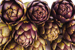 Artichokes. Pile of Purple artichokes ready for cooking, isolated Stock Image
