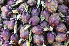 Artichokes Stock Photos