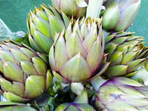 Artichokes. Raw food healthy vegetables Royalty Free Stock Photos