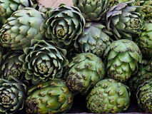 Artichokes For Sale Royalty Free Stock Image