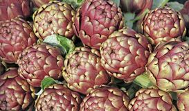 Artichokes for sale at vegetable market 10 Stock Images